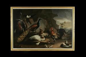 Birds, Melchior d' Hondecoeter, 17th century