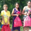 Aid for Kosovo and Metohija from HRH Crown Princess Katherine